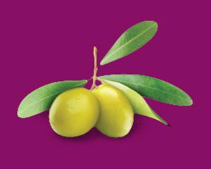 зеленой оливки